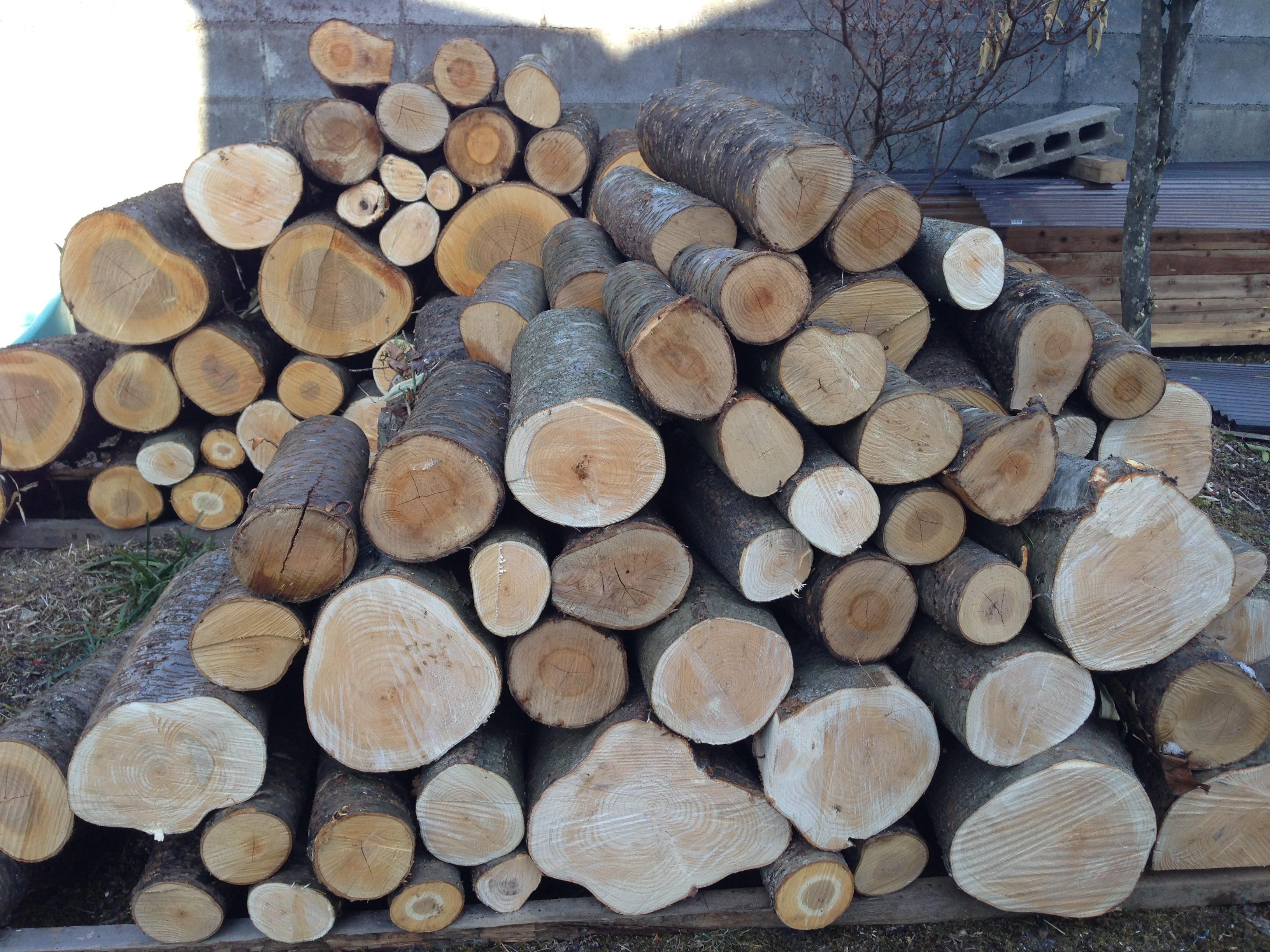 薪ストーブ導入の課題は薪の調達